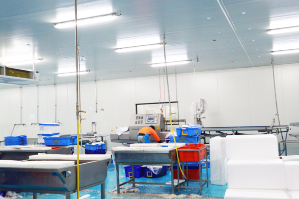 FoodByUs Supplier, FoodLink uses a variety of machinery to improve their process